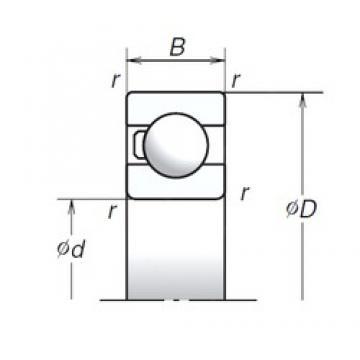 35 mm x 62 mm x 14 mm  NSK 6007T1X High Accuracy Precision Bearings