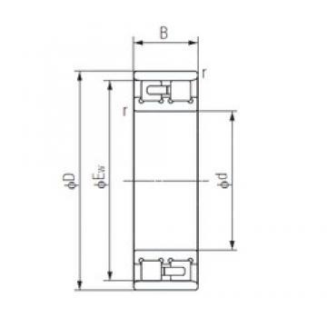 30 mm x 55 mm x 19 mm  NACHI NN3006 duplex angular contact ball bearings